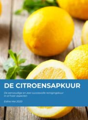citroensapkuur-e-book-cover